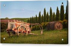 Tuscan Evening Acrylic Print by Daniel Sands