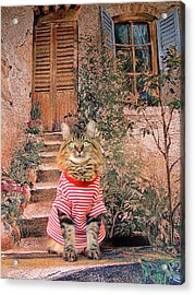 Acrylic Print featuring the photograph Tuscany by Joann Biondi
