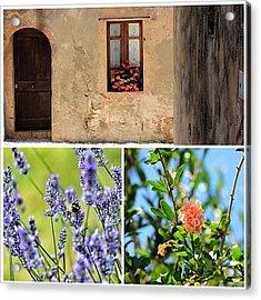 #tuscany #toscana #fiori #flower Acrylic Print