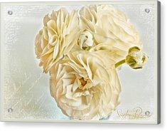 Tutus And Petticoats Acrylic Print by Sandra Rossouw