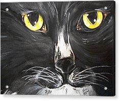 Tuxedo Meisty Acrylic Print