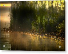 Tweet Tweet And Think Of Me Acrylic Print by Gary Smith