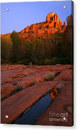 Twilight Cathedral Acrylic Print by Mike  Dawson