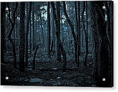 Acrylic Print featuring the photograph Twilight In The Smouldering Forest by DigiArt Diaries by Vicky B Fuller