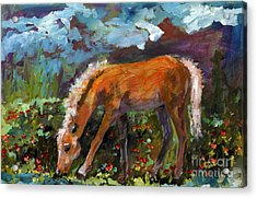 Twilight Pony In Protest Of H.r. 2112 Painting Acrylic Print by Ginette Callaway