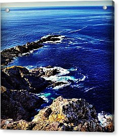 Twillingate View Acrylic Print by Christopher Campbell