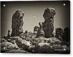 Acrylic Print featuring the photograph Twin Lions by Linda Constant
