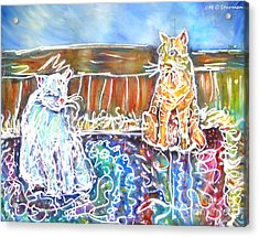 Two Cats On The Carpet Acrylic Print by M c Sturman