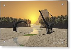 Two Diplodocus Dinosaurs Come Acrylic Print by Corey Ford