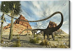 Two Diplodocus Dinosaurs Search Acrylic Print by Corey Ford
