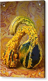 Two Gourds Acrylic Print by Garry Gay