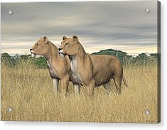 Acrylic Print featuring the digital art Two Hunters by Walter Colvin