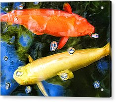 Acrylic Print featuring the photograph Two Koi Cruising by Paul Cutright