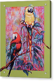 Captive Birds Of The Rain Forest Acrylic Print