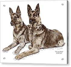Two Of A Kind - German Shepherd Dogs Print Color Tinted Acrylic Print