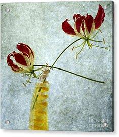 Two Gloriosa Lily. Acrylic Print