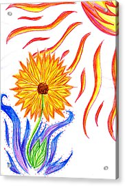 Two Suns Acrylic Print by Tessa Hunt-Woodland