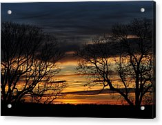 Two Tree Sunrise Acrylic Print by Peter  McIntosh