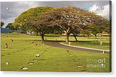 Two Trees Acrylic Print by Silvie Kendall