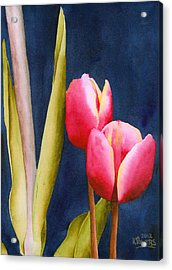 Two Tulips Acrylic Print