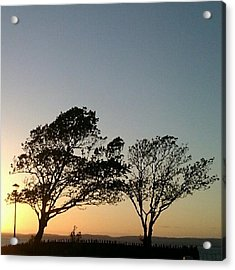 #twocouples #trees #one #lampost Acrylic Print