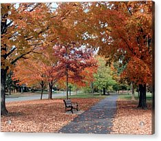 Ua In The Fall Acrylic Print