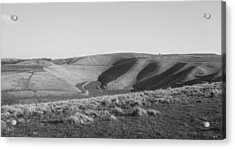 Uffington White Horse Acrylic Print by Michael Standen Smith
