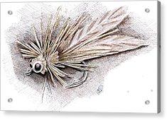 Ugly Bug Acrylic Print by H C Denney