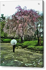 Umbrella With Cherry Blossoms Acrylic Print