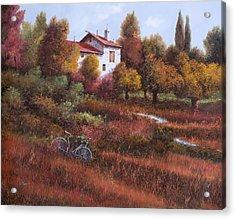 Una Bicicletta Nel Bosco Acrylic Print by Guido Borelli