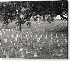 Under Shiloh Oaks Acrylic Print by David Bearden