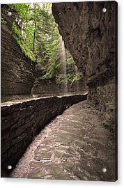 Under The Falls Acrylic Print