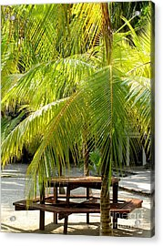 Under The Palm Tree Acrylic Print