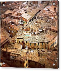 Under The Tuscan Sun.. #siena #rooftops Acrylic Print