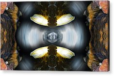Acrylic Print featuring the photograph Underground Contact by Sandro Rossi