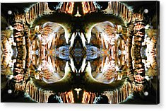Acrylic Print featuring the photograph Underground Creature  by Sandro Rossi