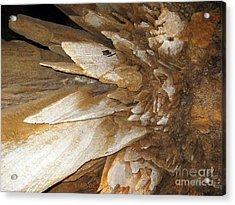 Underground Wonders. Luray Caverns Va Acrylic Print by Ausra Huntington nee Paulauskaite