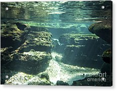 Underwater Stream In Central Florida Acrylic Print by Christopher Purcell