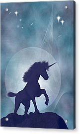 Unicorn Acrylic Print by Carol and Mike Werner