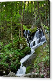 Unnamed Falls At Tremont Nc Acrylic Print by E Mac MacKay