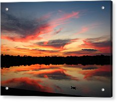 Untitled Sunset-4 Acrylic Print by Bill Lucas