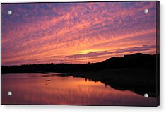 Untitled Sunset-6 Acrylic Print by Bill Lucas
