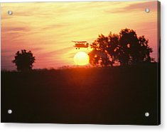 Up Before The Sun Acrylic Print by Trent Mallett
