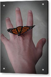 Acrylic Print featuring the photograph Upon My Hand by Julia Wilcox