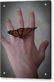 Upon My Hand Acrylic Print by Julia Wilcox
