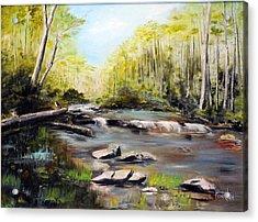 Upstate South Carolina Trout Stream Acrylic Print by Phil Burton