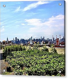 Urban Nature - New York City Acrylic Print