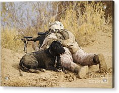 U.s. Marine And A Military Working Dog Acrylic Print by Stocktrek Images