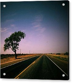 #usa #america #road #tree #sky Acrylic Print