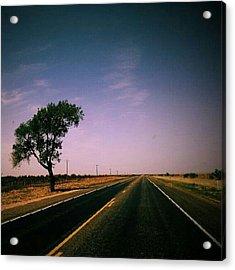#usa #america #road #tree #sky Acrylic Print by Torbjorn Schei